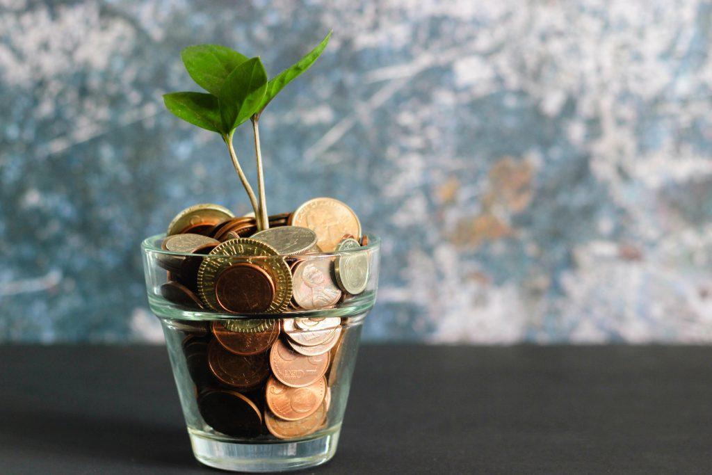 Money Tree - Micheile Henderson